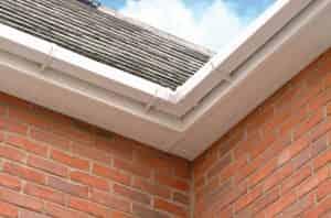 Roofline Chelmsford Essex